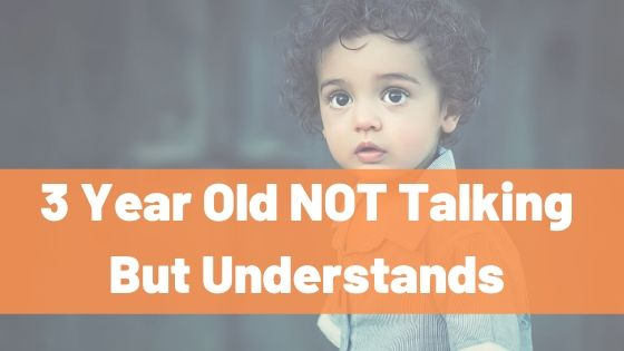 Blog Post Describing the problem 3 Year Old Not Talking but understands for Parents